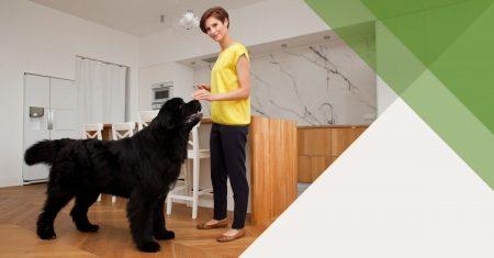 Kurs-PRO-Podstawy-żywienia-psów-featured