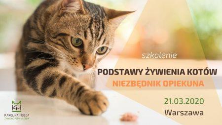 szkolenie podstawy żywienia kotów - niezbędnik opiekuna